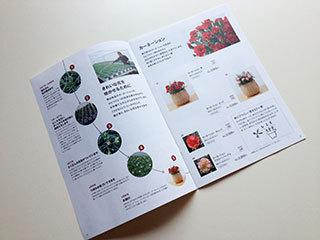 無印良品「母の日の花」パンフレットデザイン中面1