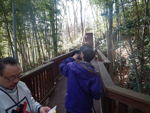 竹林の木漏れ日を撮影中