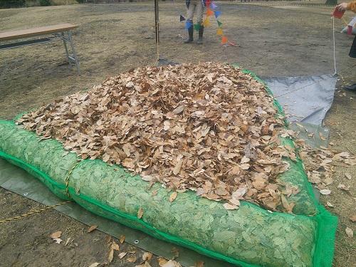 落ち葉のプール