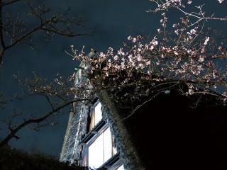 夜の民家園・夜間公開
