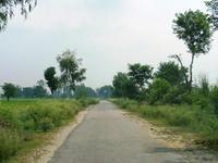 田舎の舗装路