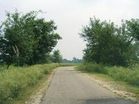 北インド郊外の道路