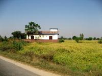 草原と白い建物