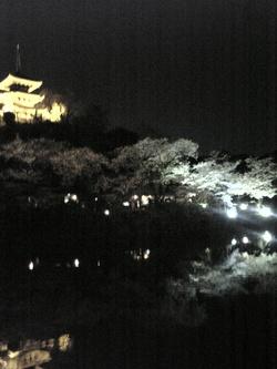 三渓園2008②