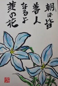 朝は皆善人なるよ韮の花
