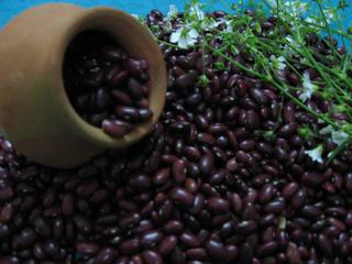 ラージマ豆