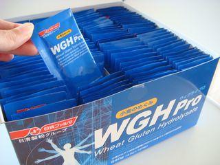 WGH Pro(ウィグライプロ)