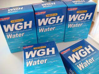 WGH Water(ウィグライウォーター)