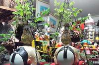 電球アート 電球の花瓶「閃閃煌煌」の飾り付け!