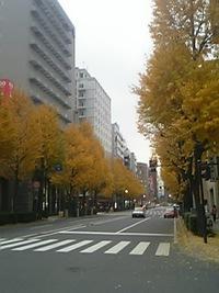 馬車道はまだ秋だった 2006/12/14 21:30:00