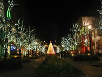 クリスマスツリー 2008/12/12 04:19:59