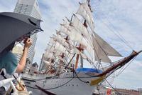 日本丸 総帆展帆